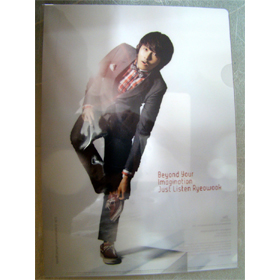 [SM Goods] Super Junior - Clear File - Ryeo Wook