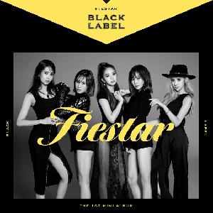 FIESTAR - Mini Album Vol.1 [Black Label]
