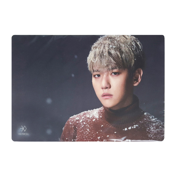 [SUM] EXO - Desk Mat [Sing For You]