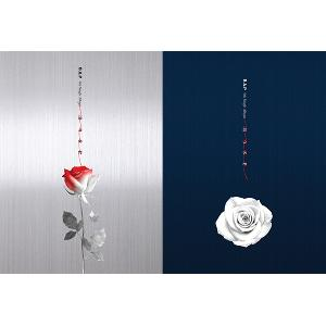 (First press) [SET][2CD + 2POSTER SET] B.A.P - Single Album Vol.6 [ROSE] (A ver.) + (B ver.)
