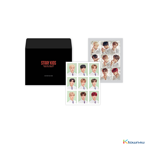 Stray Kids - Portrait Photo & Stamp Sticker [Hi-STAY TOUR FINALE IN SEOUL]