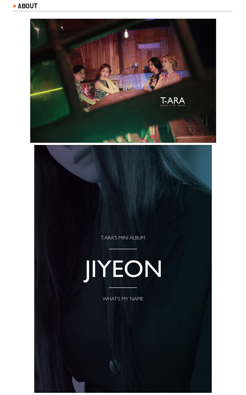 T-ara - Mini Album Vol.13 [What's my name?] (Group ver. / Nomal Edition)