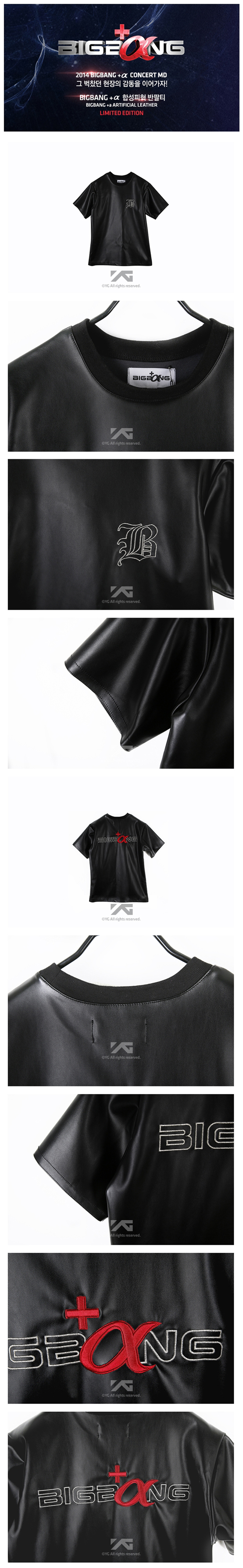 [ K-POP ] (YG Official MD) BIGBANG +a Artificial Leather (L) (Limited Edition)